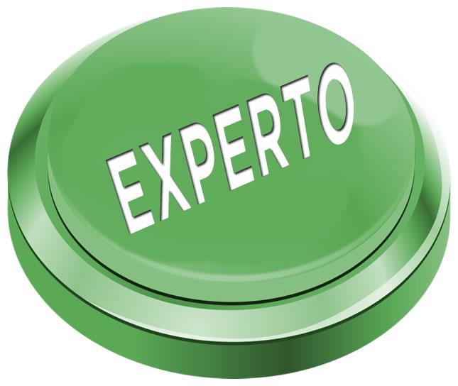 #PAEMX - Experto