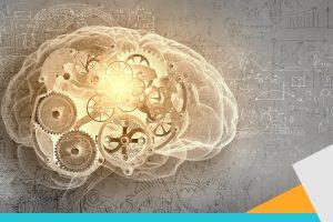 Cerebro 40s productividad