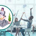 5-consideraciones-para-crear-el-mejor-espacio-de-trabajo