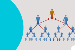 Evolución de la gestión de la Estructura Piramidal